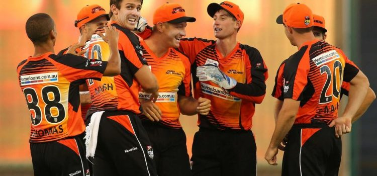 Perth Scorchers are in contention for the 2018/19 Big Bash
